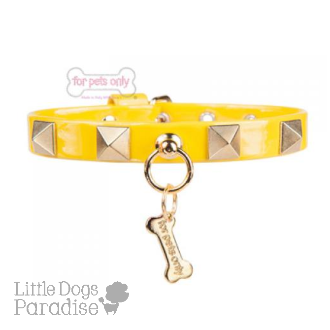 Chic And Stud Collar - Giallo
