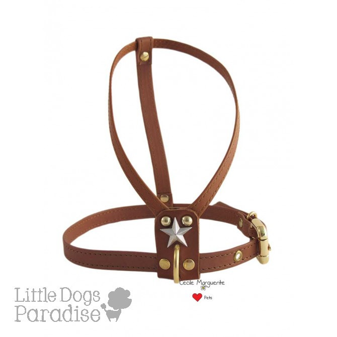 Simply Harness