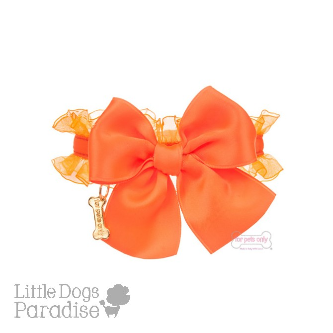 Fluo Collection Collar - Orange