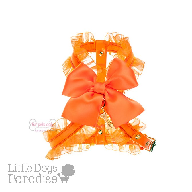 Fluo Collection Harness - Orange