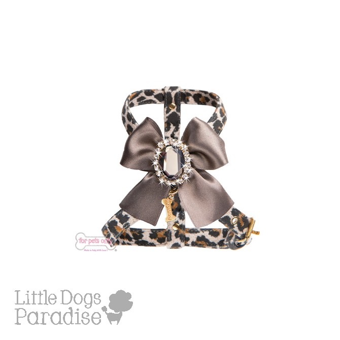 Diamond Love Harness Leo