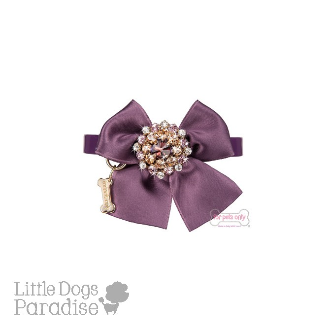 Purple Ambition Collar