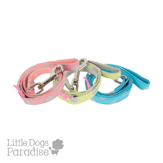Chic Leash