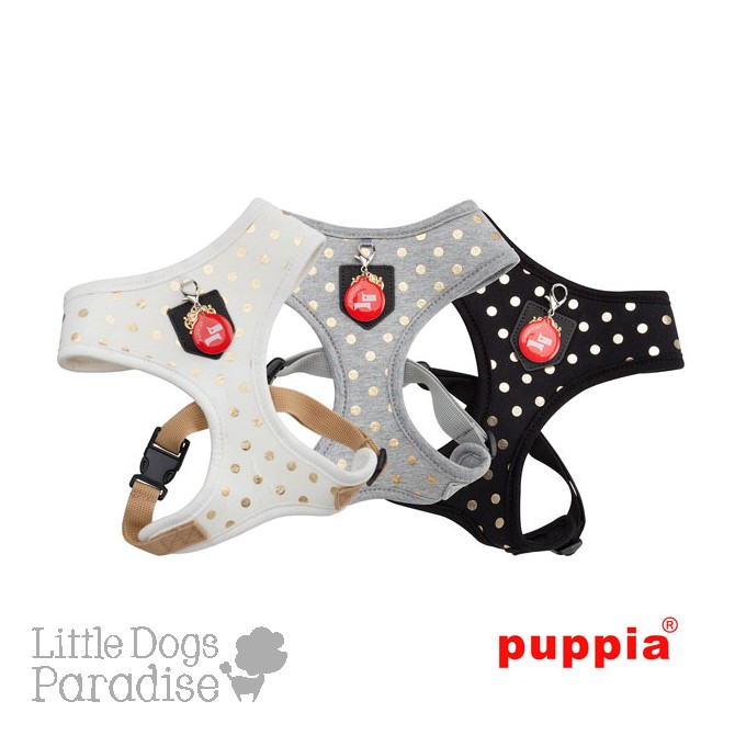 Modern Dotty Harness A