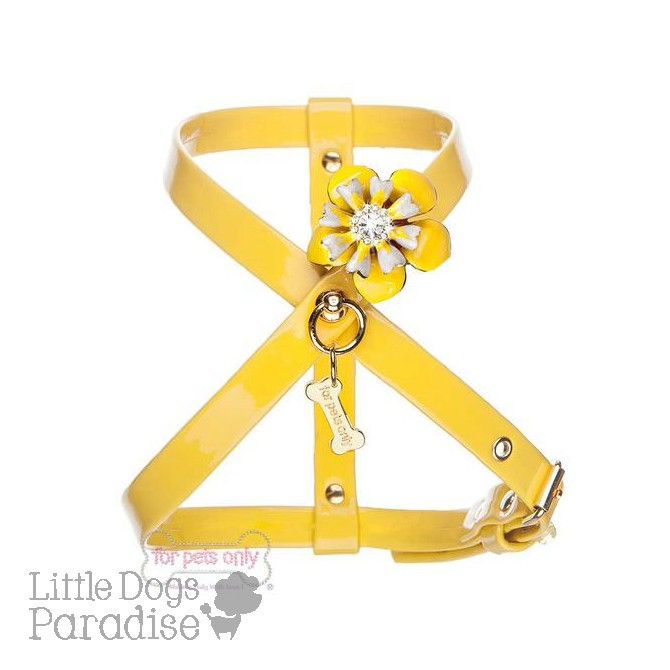 Love Flowers Harness - Giallo