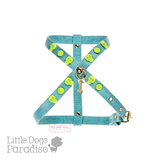 Rock & Fluo Harness