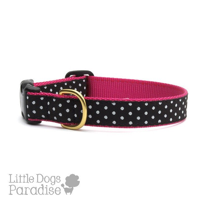 Black and White Dot Collar