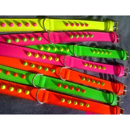 White Fluo Leash