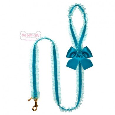 Lingerie Leash Teal