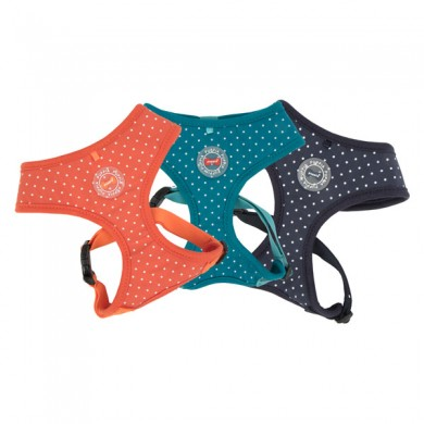 Dotty Harness II - A