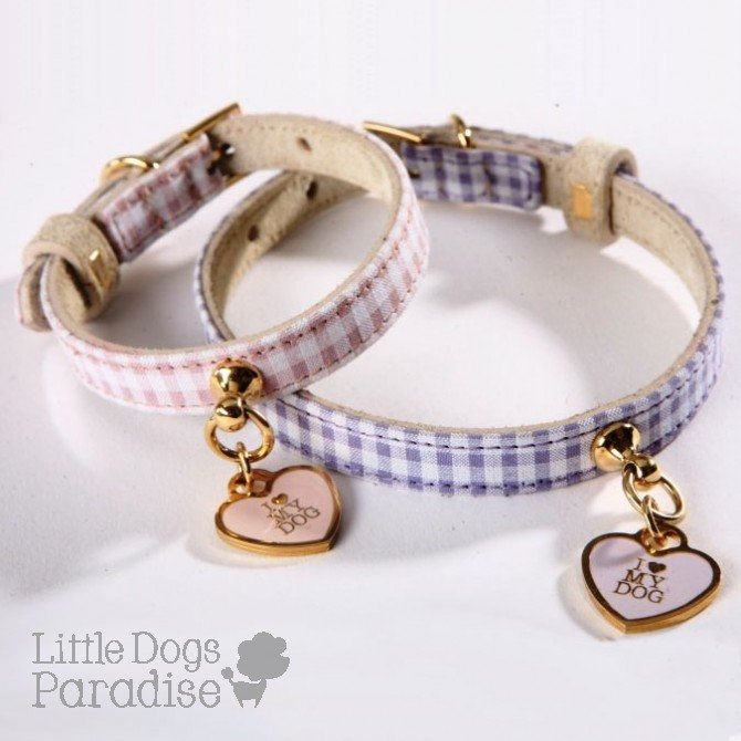 Collar and Leash Antimosquitos Charm