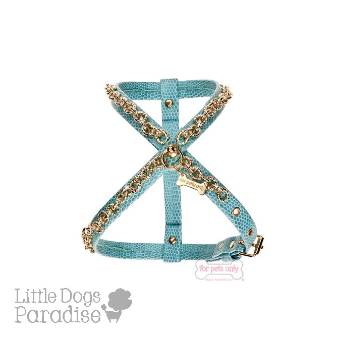 Winter Chain Harness