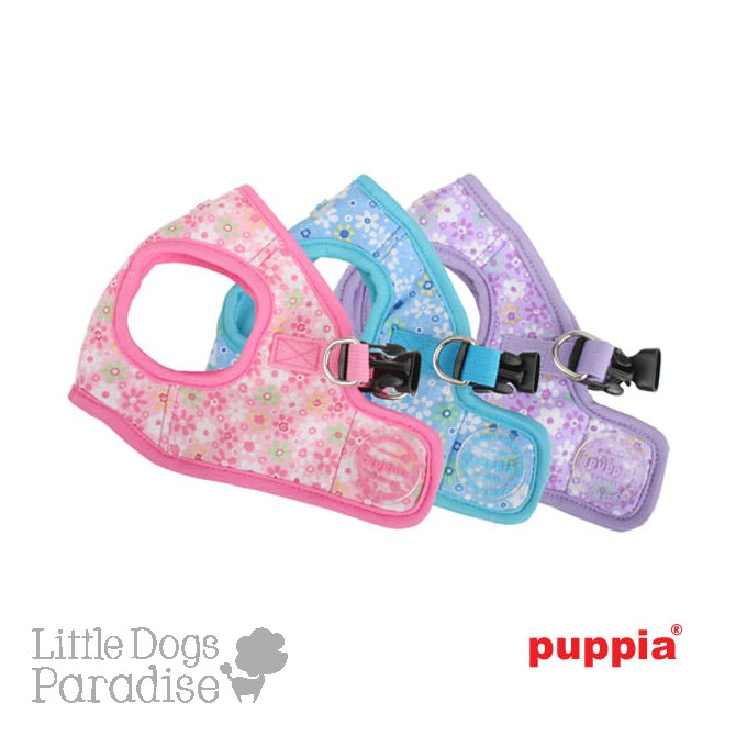 Buttercup Harness B