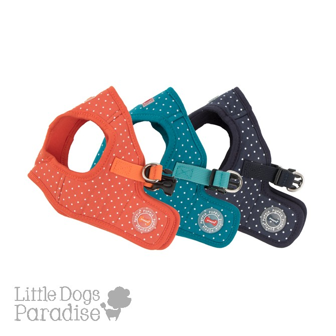 Dotty Harness - II - B