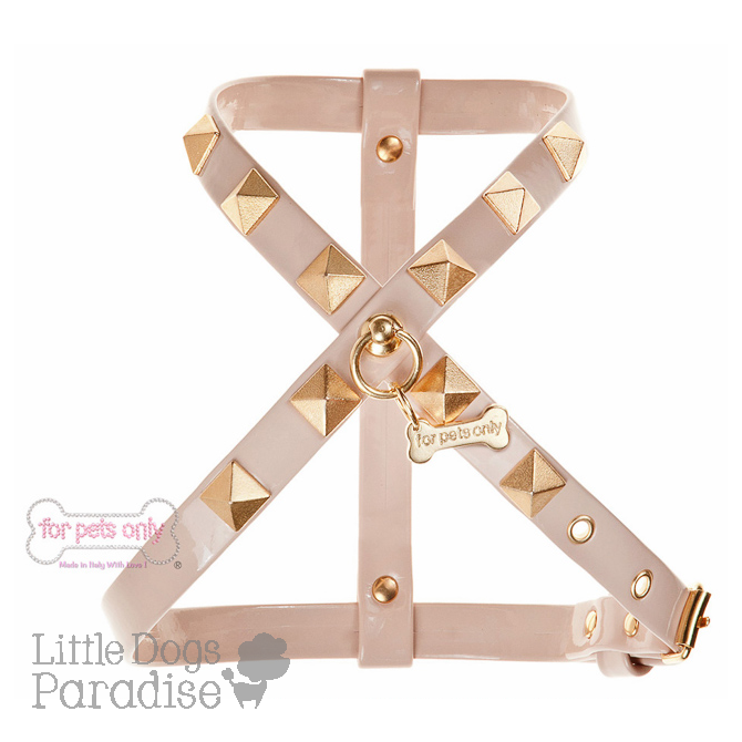 Chic And Stud Harness