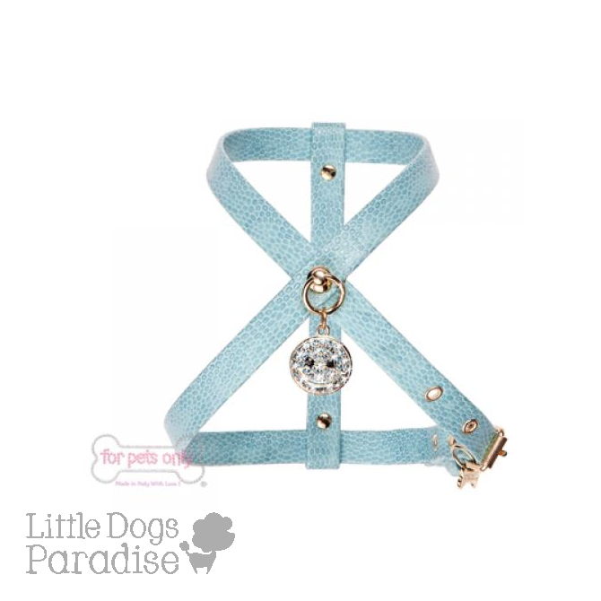 Charming Smile Harness - Azzurro