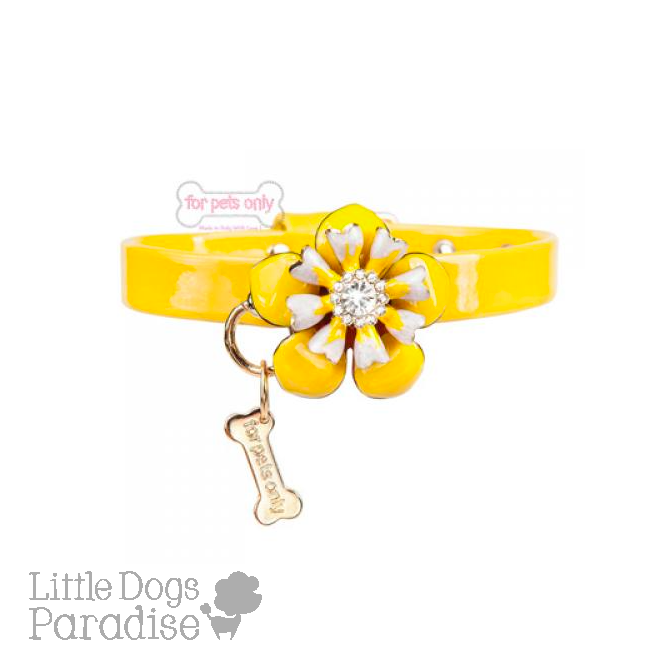 Love Flowers Collar