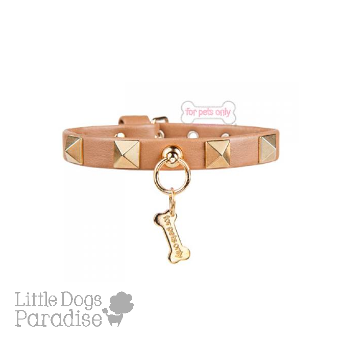 Chic And Stud Collar - Camel