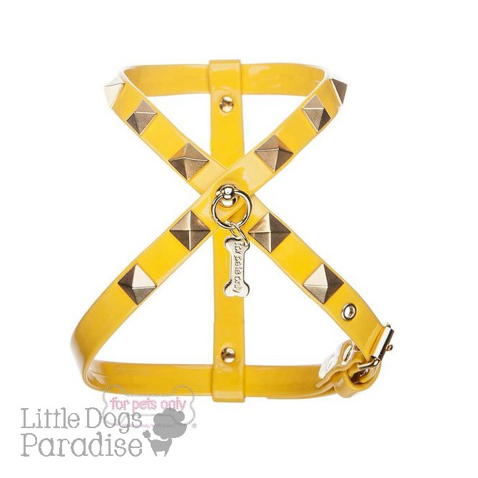 Chic And Stud Harness - Gialla