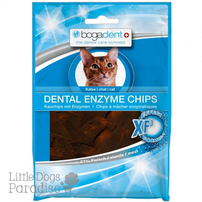 Dental Enzyme Chips – Gatto