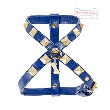 Chic and Studs Harness