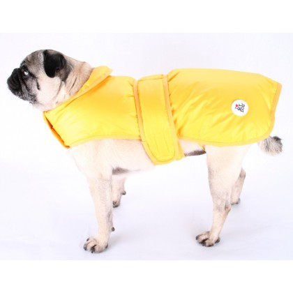 Raincoat Downgoose