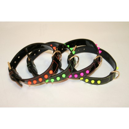 Black Collar with Fluo Studs