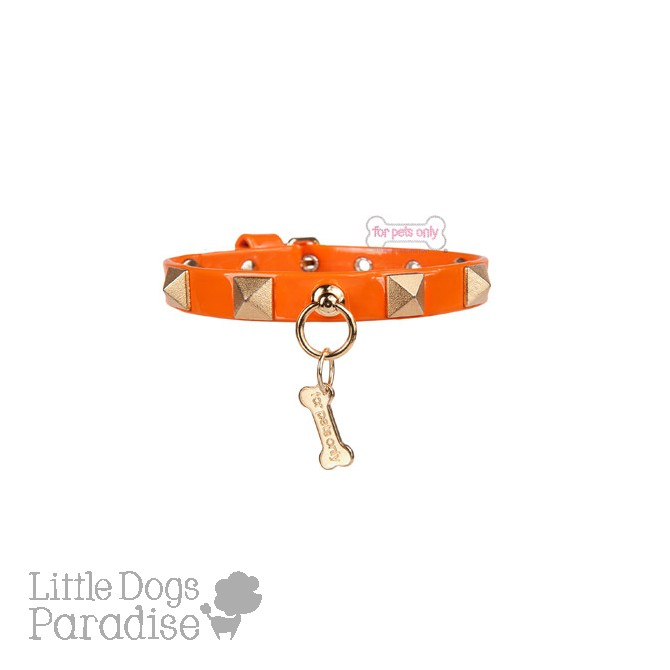 Chic And Stud Collar Orange