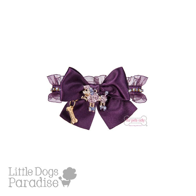 Poodle Club Collar Viola