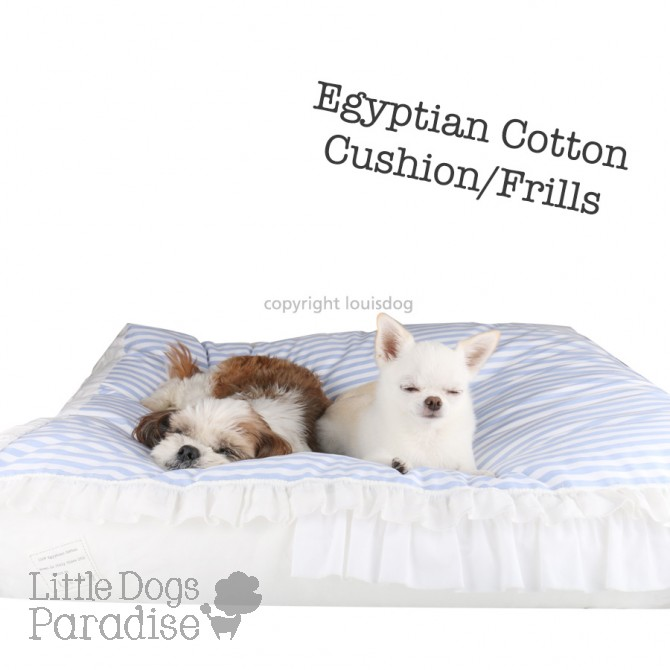 Egyptian Cotton Cushion/F