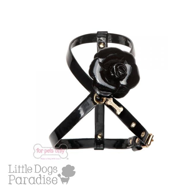 The Perfect Flower Harness