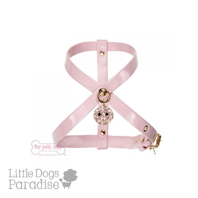 Charming Smile Harness