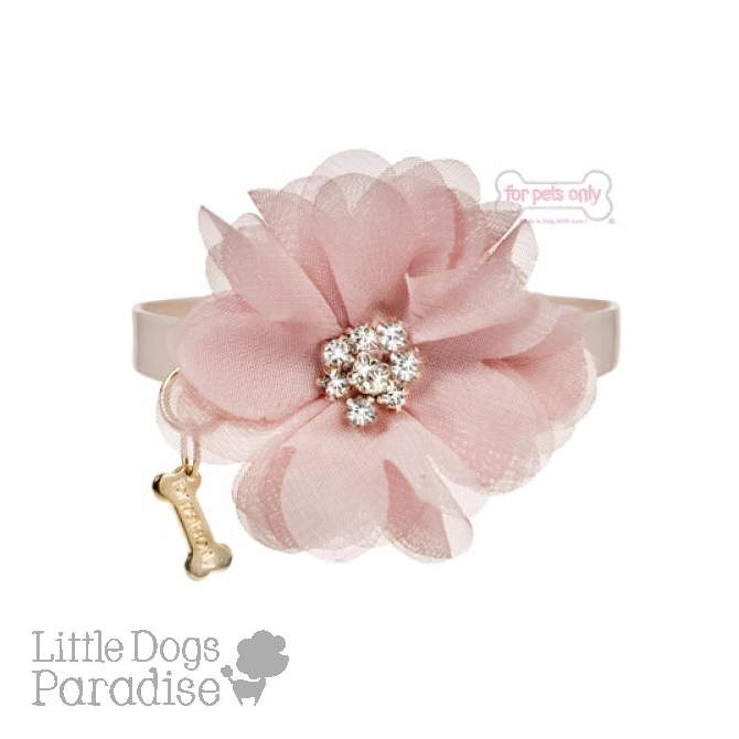 Diamond Flower Collar