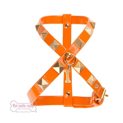 Chic And Stud Harness Arancio