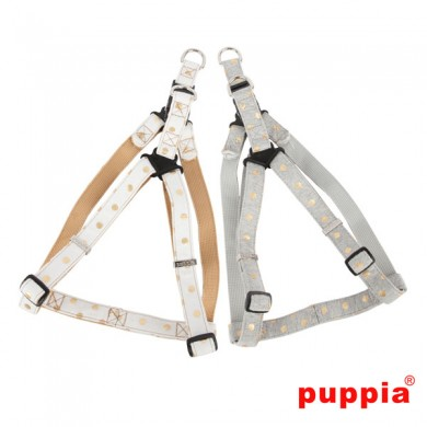 Modern Dotty Harness X